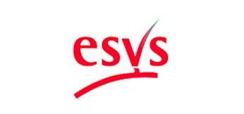 Partner - ESVS