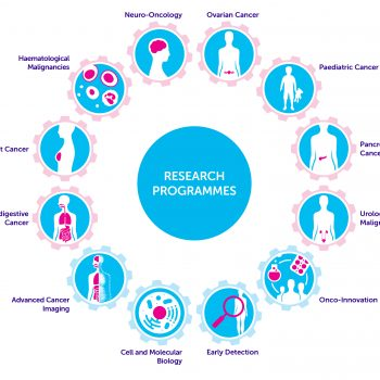 Diagram showing the 12 research programmes of Cancer Research UK Cambridge Centre