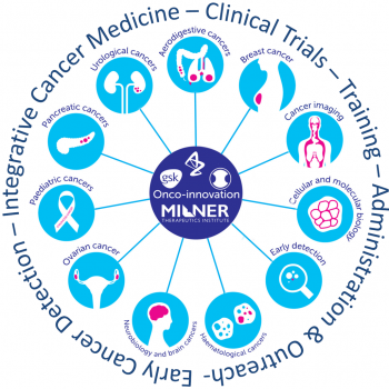Logo showing the 12 cancer themes being researched as part of the Integrative Cancer Medicine programme at Cancer Research UK Cambridge Institute