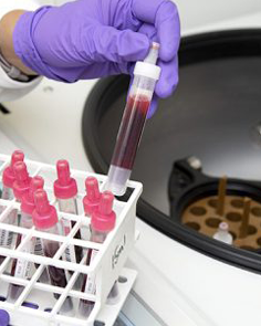 Blood vials being placed in centrifuge
